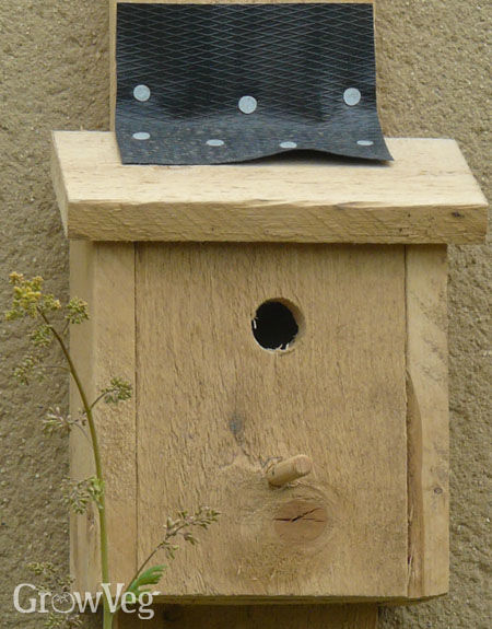 Nest box for birds