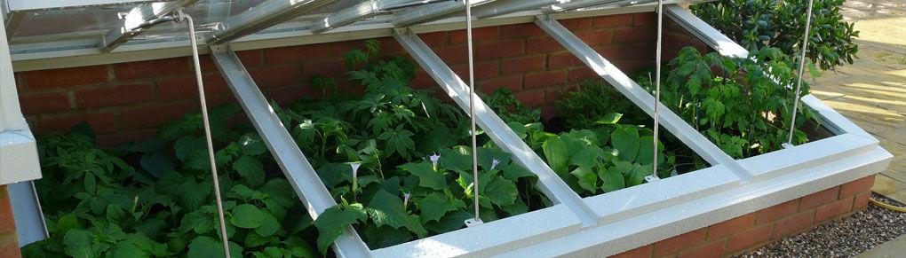 How to Harden Off Indoor-Sown Plants