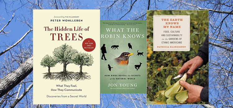 Three new gardening books