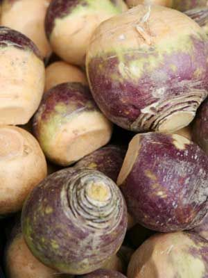 Rutabaga, also known as Swede, yellow turnip