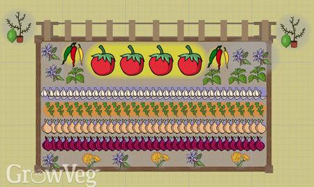 Salsa garden plan