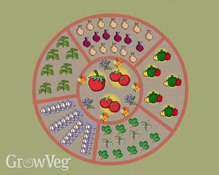 Pizza garden plan
