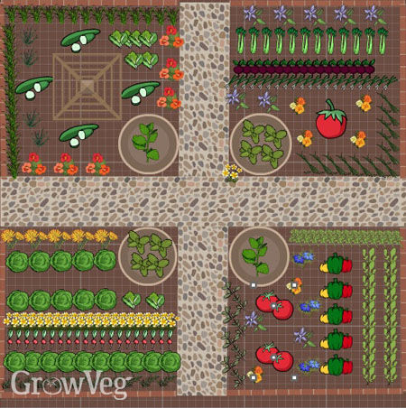 Salad bar garden plan