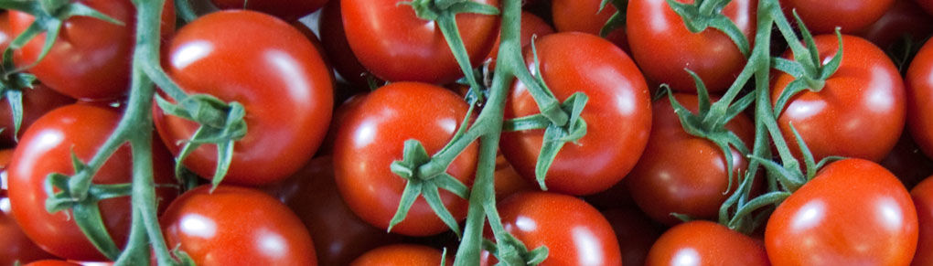 The Charm of Cherry Tomatoes - the Best Varieties to Grow