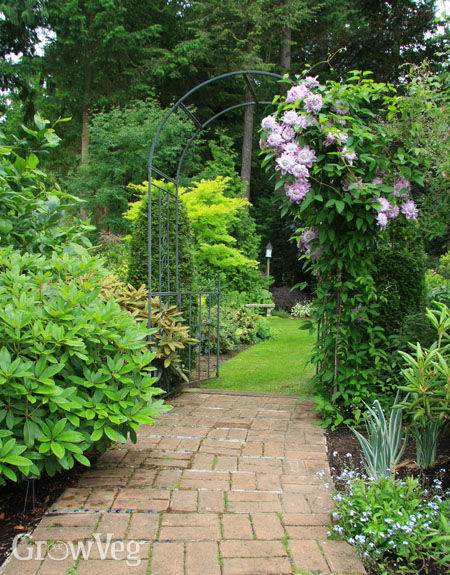 Planning An Easy Access Garden