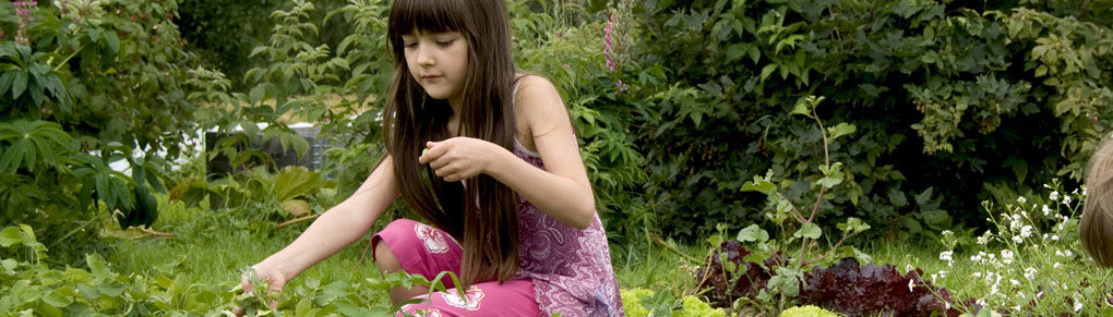Help Kids Grow - Plant a School Garden!