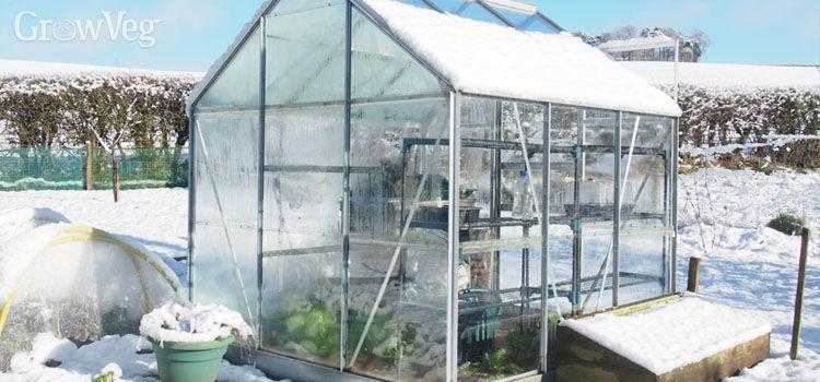 """Greenhouse"