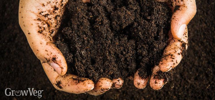 Rich organic matter for healthy soils
