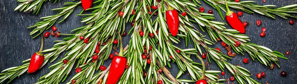 Christmas Gift Ideas for Vegetable Gardeners