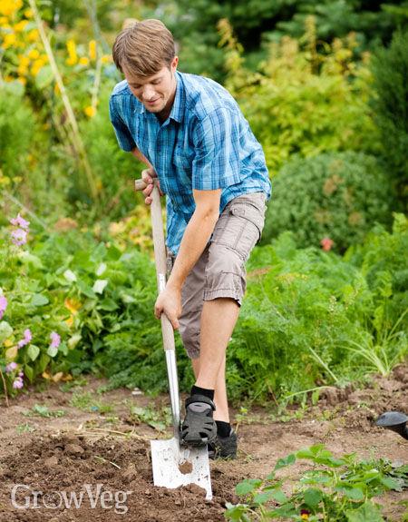 """""""Digging"""