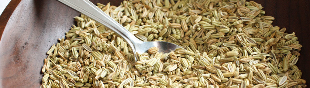 How to Use Fennel in the Kitchen and Garden