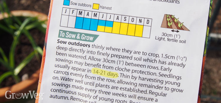 """""""Seed"""