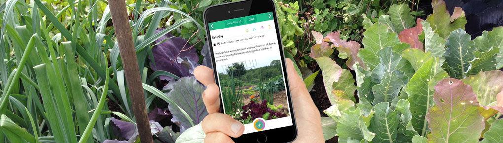 Journal Your Garden Progress to Become a Better Gardener