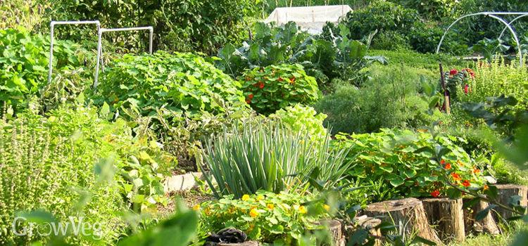"""Gardening"