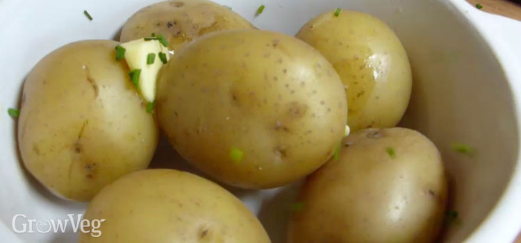 https://res.cloudinary.com/growinginteractive/image/upload/v1453892130/growblog/potatoes-butter-chives-2x.jpg
