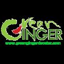 Green Ginger Menu