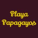 Playa Papagayos Menu