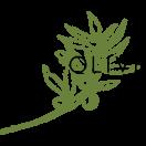 Fig & Olive III Menu