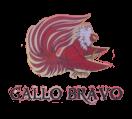 Gallo Bravo Menu