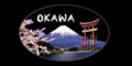 Okawa Japanese Cuisine Menu