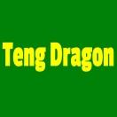 Teng Dragon Menu
