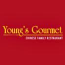 Young's Gourmet Menu