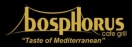 Bosphorus Cafe Grill Menu