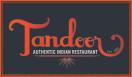Tandoor Fishtown Menu