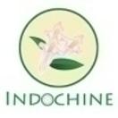 Indochine Vegan Menu