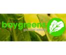 Baygreens Salads & More Menu