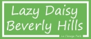 Lazy Daisy Menu