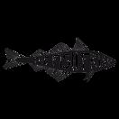 The Fish Friar Menu