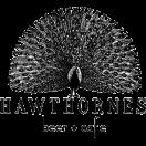Hawthornes Beer Cafe Menu