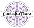 Ceviche Town Menu