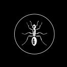 The Black Ant Menu