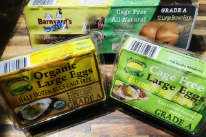 Cage free brown eggs - delivery menu