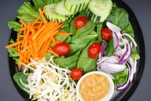 SL1. Thai Soup's Salad - delivery menu