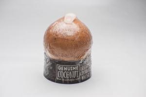 Very Very Fresh Coconut - delivery menu
