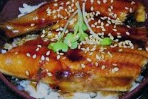 Unagi Don  - delivery menu