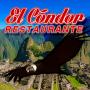 El Condor Latin Fusion