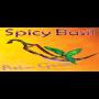 Spicy Basil (Denver)