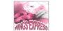 Super Wings Express