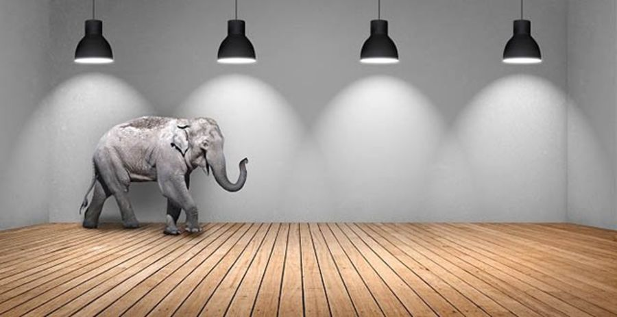 Pricing—Addressing the Elephant in the Room
