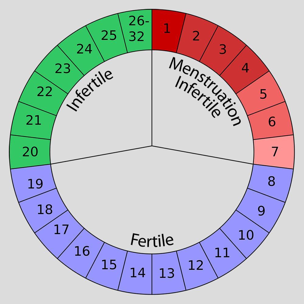 fertility-calendar-min_dem8t3 Begini Cara Mengetahui Masa Subur Wanita Family Health Tips Kesehatan Woman