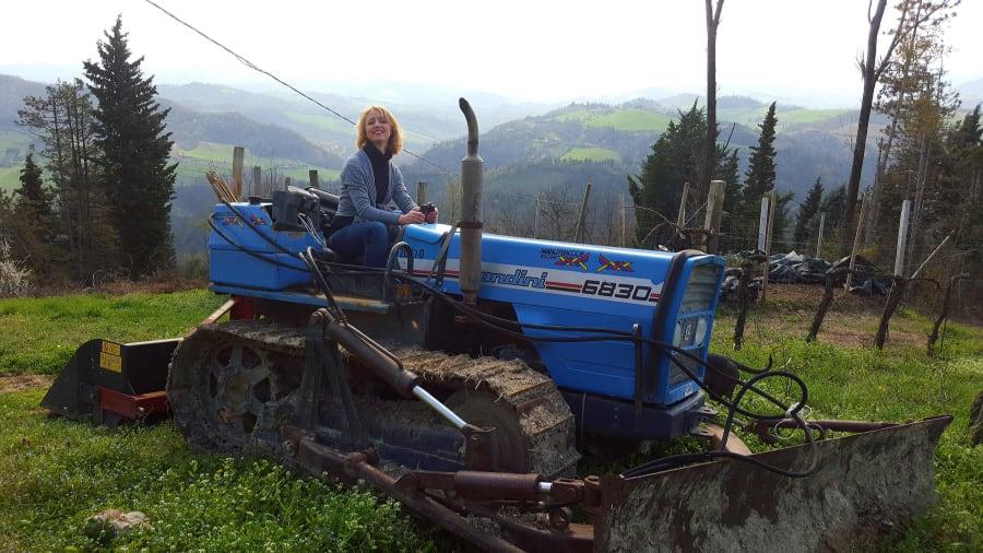Agriturismo Guardastelle Bologna - SUL TRATTORE