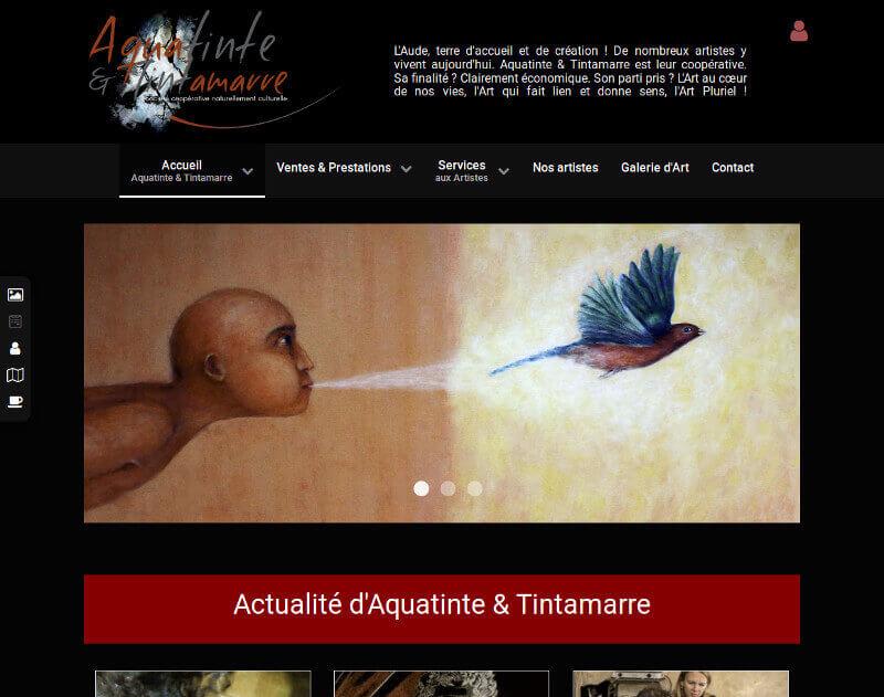 Miniature de la page d'accueil du site Aquatinte & Tintamarre