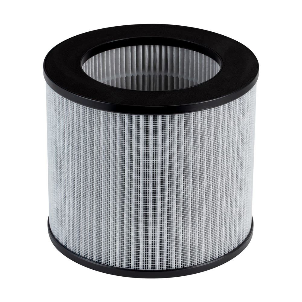 Bissell® Sanitaire® Pleated and Carbon Filter for MyAir