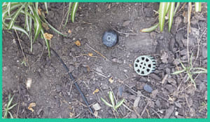 A fake sprinkler can be a good hiding spot for a key