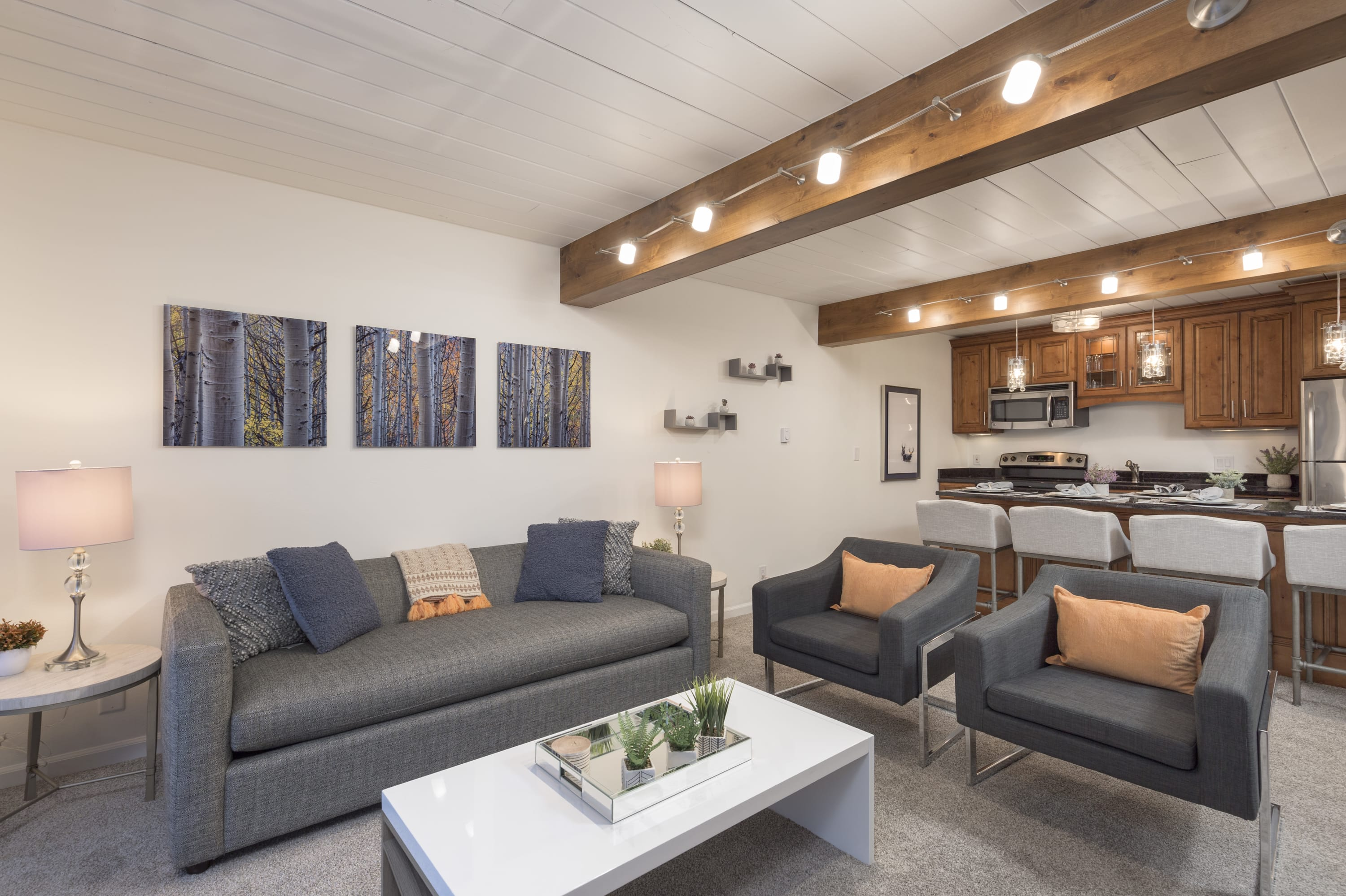 Updated 2 BR in the Heart of Aspen - Steps to Gondola with Pool & Hot...