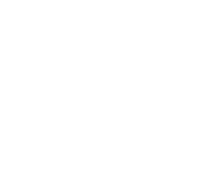 One Palm Logo